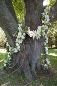 A Tree Garland for a wedding anniversary